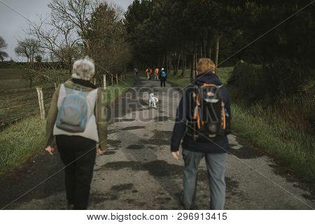 Sarria, Spain - April 7th, 2019: Dog Walking Between Camino De Santiago Pilgrims That Are Walking Wi