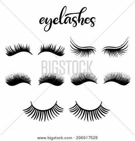 Lashes Lettering Vector Illustration For Beauty Salon, Fashion Blog, Logo, False Eyelashes Extension