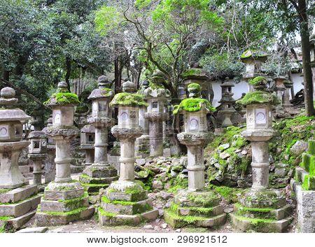 Old stone japanese lanterns at Kasuga Grand Shrine (Kasuga-Taisha Shrine), Nara Japan. UNESCO world heritage site