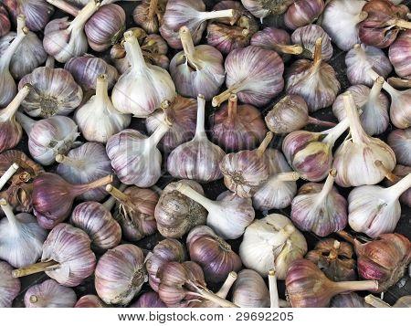 Close Up Of Garlic Background