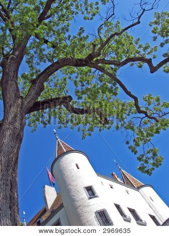 Nyon Castle And Tree