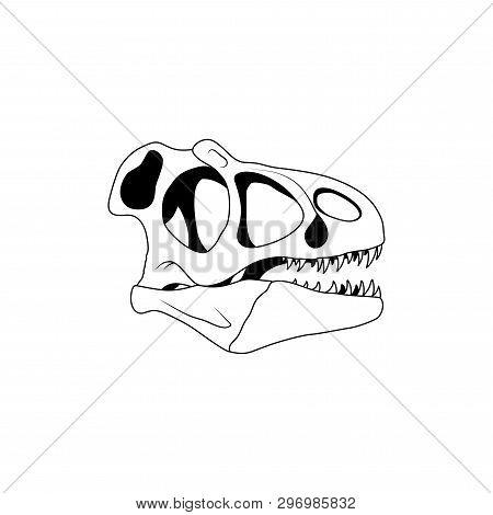 Vector Illustration Of Dinosaur Skull. Velociraptor Skull