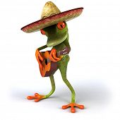 Mexican frog poster