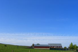 Barns On A Clear Day
