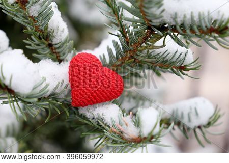 Red Knitted Heart On Fir Branches Covered By Snow. Background For Christmas And New Year Celebration