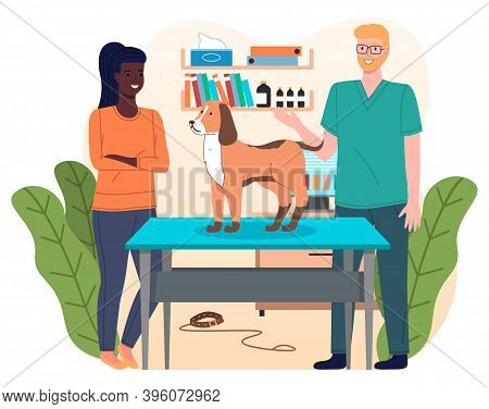 Dog At Reception Of Veterinarian. Owner Of Pet Is Standing Near Veterinary Table Veterinarian Examin