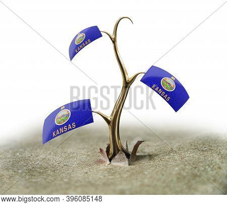 3d Illustration. 3d Sprout With Kansas Flag On White