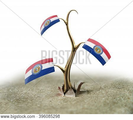 3d Illustration. 3d Sprout With Missouri Flag On White