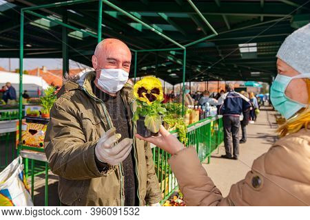 Seller Is Offering, Selling Potted Flowers At Outdoor Flea Market Protected Against Virus Covid-19,