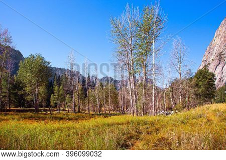 Yosemite Park is located on the slopes of the Sierra Nevada. Yosemite Valley. Autumn yellowed grass in the meadows of the valley.