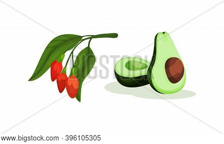 Goji Berry Branch And Halved Avocado As Superfood Vector Set