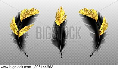 Black Feathers With Gold Glitter Isolated On Transparent Background. Vector Realistic Set Of Golden