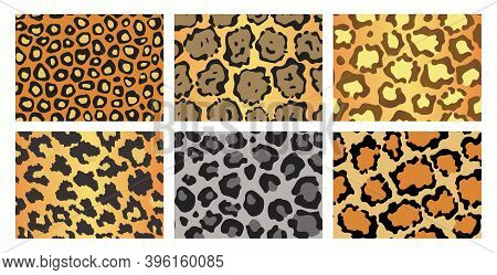 Collection Of Leopard Textures. Seamless Prints With Wild Animal Skin. Leopard Or Cheetah Nature Des