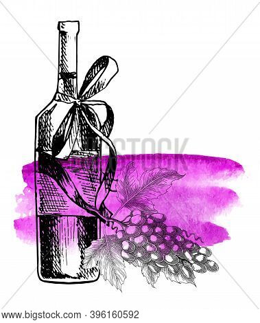 Wine Grape. Bottle, Grape Twig. Vector Background With Wine Stains And Hand Drawn Sketch Illustratio