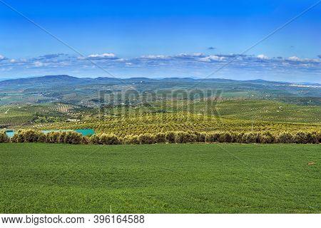 Landscape In Spring In Province Of Jaen, Spain