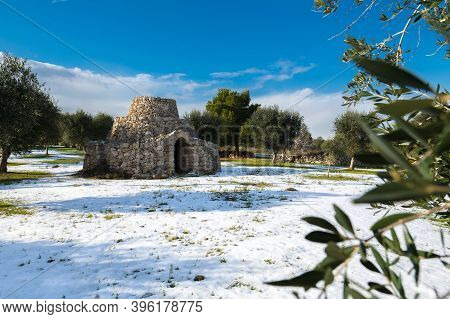 Beautiful Trullo With Olive Grove In The Snow, Manduria, Salento, Apulian Landscape After A Snowfall