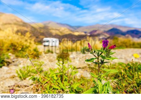 Spring Flowers And Camper Vehicle Wild Camping In The Distance. Caravan Vacation. Sierra Alhamilla M