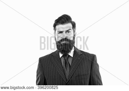 Serious Bachelor. Bachelor Isolated On White. Bearded Man In Formal Style. Single Hipster. Bachelor