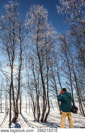 Exotic trip to the Arctic. Tourist with a photo bag photographs of the winter forest. Travel to Santa Claus. Lapland. Sunset in the winter forest. The sun is low on the horizon.
