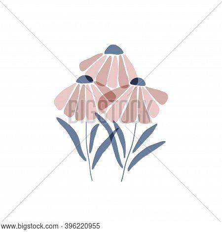 Chamomile Silhouette. Marguerite Flat Vector Illustration Isolated White Background. Scandinavian St