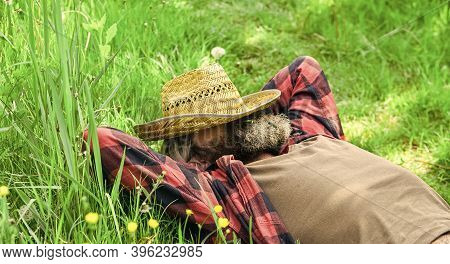 Day Dreamer. Agriculture Farmer Rest After Day Work. Worker In Rural Farm. Farmer Relax On Green Gra