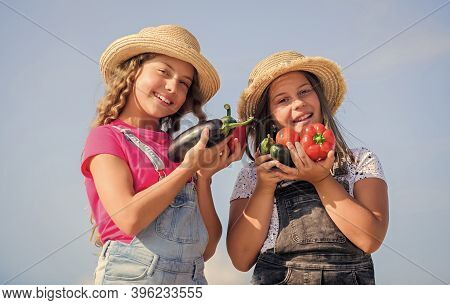 Happy Sisters Work At Family Farm. Natural Vitamin Nutrition. Selling Homegrown Food Concept. Girls