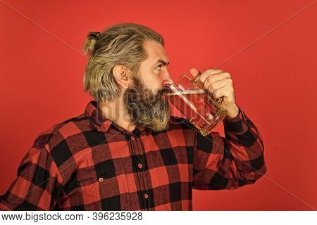 Craftsmanship. Mature Bearded Man Hold Beer Glass. Leisure And Celebration. Man Drinking Beer In Pub