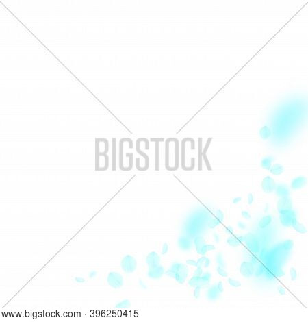 Turquoise Flower Petals Falling Down. Delicate Romantic Flowers Corner. Flying Petal On White Square
