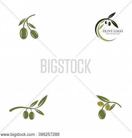 Set Of Olive Oil Logo Template Icon Design