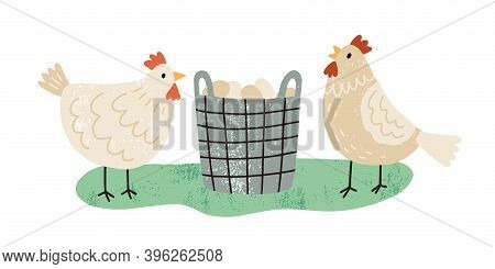 Two Hens Near Wicker Basket Full Of Organic Eggs. Pair Of Farm Free Range Chickens. Domestic Poultry