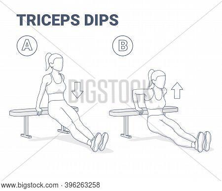 Bench Triceps Dips Female Exercise Guide Black And White Illustration.