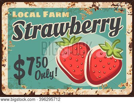 Strawberry Berry Metal Plate Rusty Fruits Food And Farm Market Price, Vector Retro Poster. Strawberr
