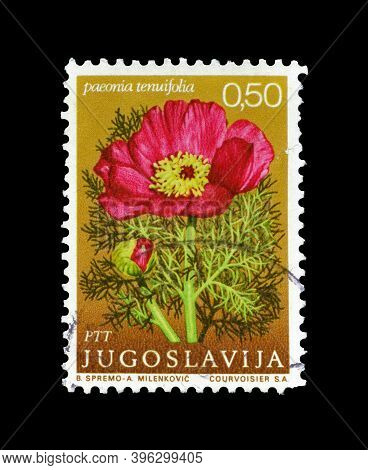 Yugoslavia - Circa 1969 : Cancelled Postage Stamp Printed By Yugoslavia, That Shows The Thin Leaved