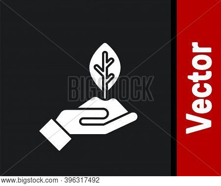 White Plant In Hand Of Environmental Protection Icon Isolated On Black Background. Seed And Seedling