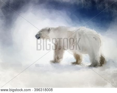 Digital painting of an adult polar bear, side view. Great image for Christmas or winter themed seasonal projects.