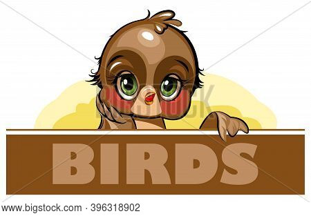 Sparrow. Funny Chick. Cute And Funny Baby Bird. The Isolated Object On A White Background. Illustrat