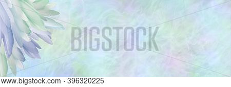 Beautiful Pastel Coloured Ethereal Feather Corner Message Background Banner - Multicoloured Neat Pil