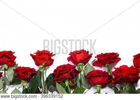 Red roses border frame isolated on white background, Valentine's Day