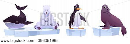 Cartoon Wild Animals On Ice Floes Sea Whale, White Bear, Penguin And Seal. North Pole Inhabitants In