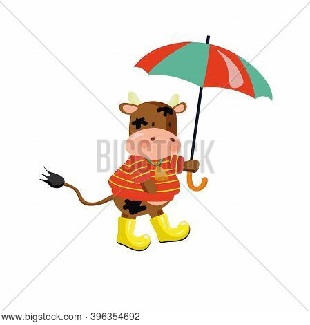 Ox Wearing Yellow Rubber Boots And Striped Pullover Under An Umbrella. Vector Illustration.