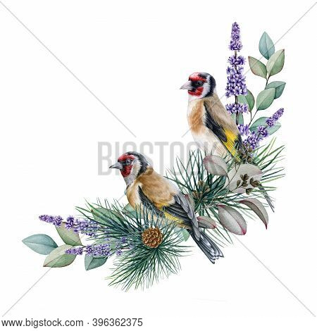 Goldfinch Bird Winter Floral Arrangement Watercolor Illustration. Hand Drawn Natural Decor With Gold