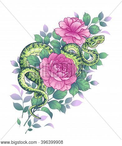 Hand Drawn Twisted Snake And Roses Isolated On White. Vector Green Python And Flowers. Floral Arrang