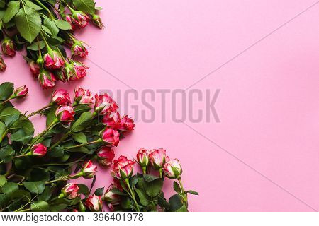 Beautiful Floral Arrangement On A Pink Background. Pink Roses And Copy Space For Text. Concept For V