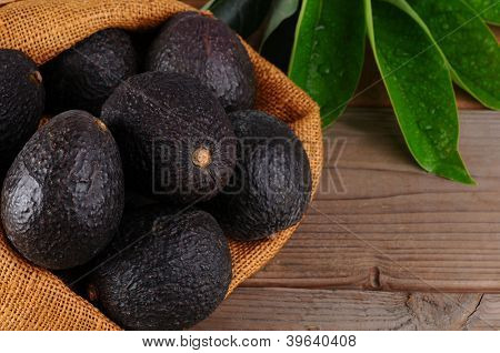 Hass avocados in a burlap sack on a wood background with leaves. Horizontal format with copy space.