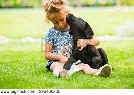 Domestic Animals Love And Appreciate Their Young Owners