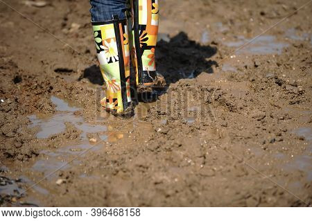 Shallow Depth Of Field (selective Focus) Image With Colorful Rubber Boots In Very Wet And Deep Mud.