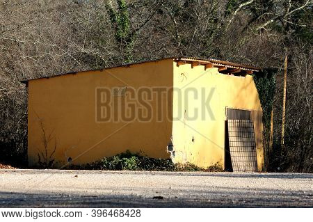 Small Yellow Abandoned Storage Area With Dilapidated Facade Partially Covered With Crawling Plants A