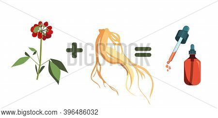 Red Ginseng Root Leaf And Berries.drug Prolongs Life And Youth.plant Extract For Cosmetology. Elixir
