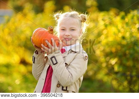 Cute Young Girl Holding Small Pumpkin On A Pumpkin Patch. Kid Picking Pumpkins At Country Farm On Wa
