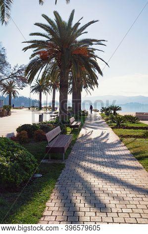 Beautiful Mediterranean Landscape. Montenegro. Embankment Of Tivat City On Sunny Autumn Day